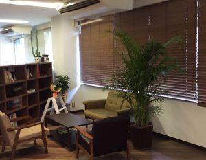 観葉植物応接室