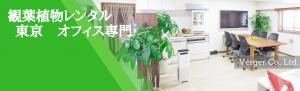 観葉植物オフィス