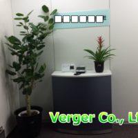 観葉植物設置例