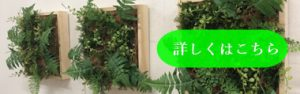 壁掛け壁面緑化