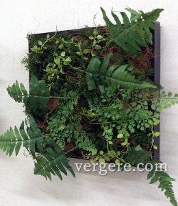 ブラックパネル壁面緑化