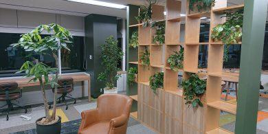 観葉植物と人工植物